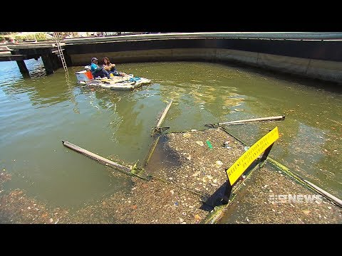 Cleaning Mission | 9 News Perth
