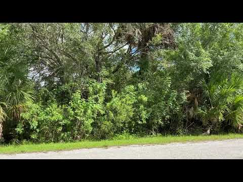 SOLD By Compass Land USA - 0.46 Acres - With Paved Road! In Port Charlotte, Charlotte County FL