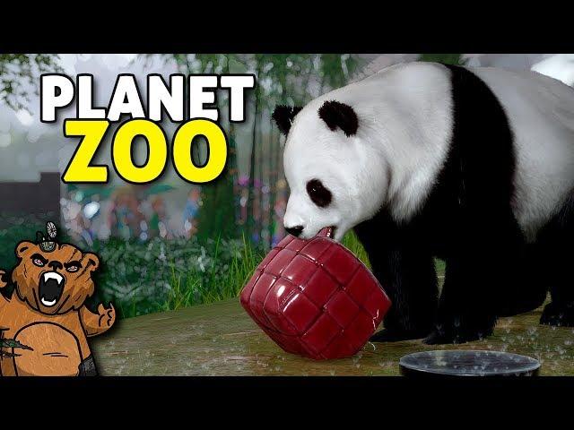 Pandas pra alegrar seu dia! | Planet Zoo #03 - Carreira Gameplay PT-BR