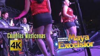 Maya Excelsior - Cumbias Musiconas Como La Flor, La Carcacha / Calidad 4K