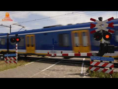 DUTCH RAILROAD CROSSING - Zwolle - Maatgravenweg