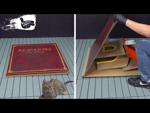 how-to-build-a-pop-up-book-cat-house