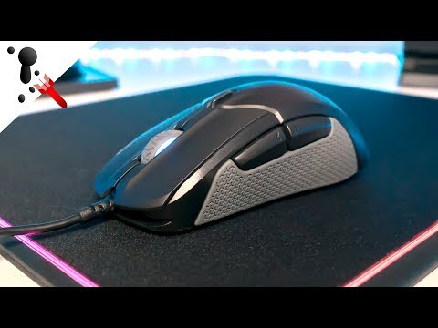 SteelSeries Rival 310 Review (Large, Optical, 92g, Omron Mech)
