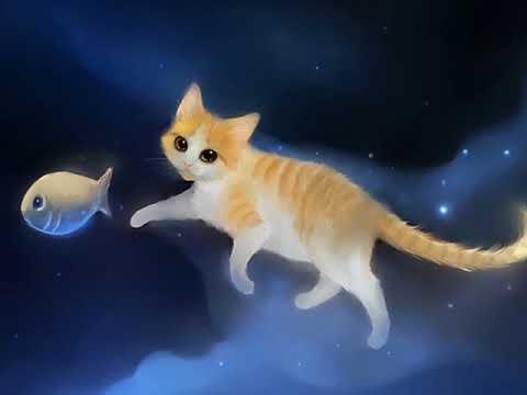 CATS - Le Nom D'un Chat