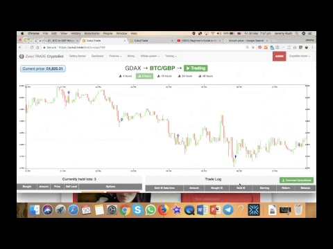 Beginner's Guide to Bitcoin Trading Bot