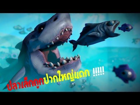 เกมปลาปิรันย่าเขมือบโลก | Fish FEED AND GROW #1