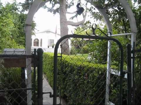 WALKING TOUR OF SANTA MONICA HOMES VIDEO