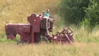 Żniwa 2009 zabytkiem massey ferguson 31 harvesting
