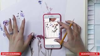 Как нарисовать ЦВЕТЫ АКВАРЕЛЬЮ пошаговый урок. Школа Рисования Вероники Калачева