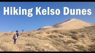 Hiking Kelso Dunes