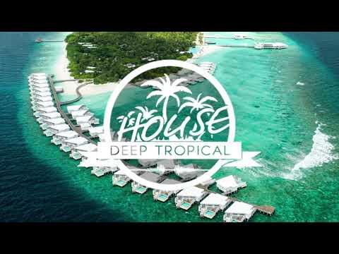 DVBBS & CMC$ ft. Gia Koka - Not Going Home (Jad Alexander Remix)