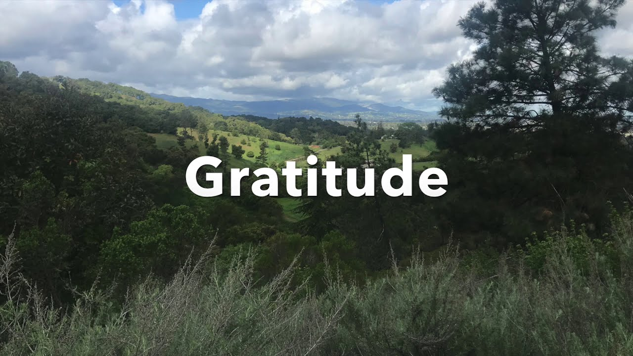 Guided Meditation for Gratitude