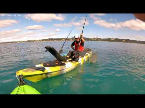Kayak fishing,Ohope beach,New