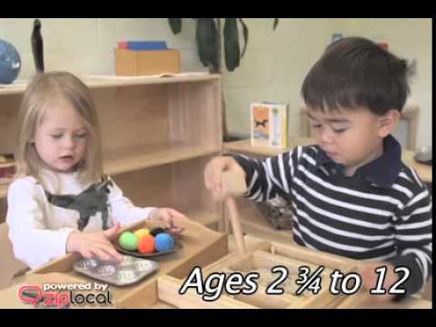 Montessori School Of Mclean - (703) 790-1049