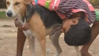 কুকুরের দুধ পান করে কিশোর ! Bangla Latest News