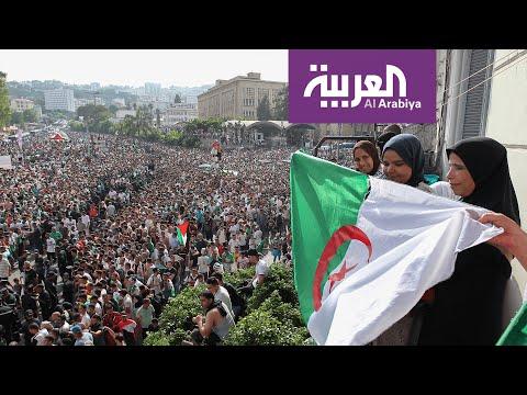 لاعبو الجزائر  - نشر قبل 13 ساعة