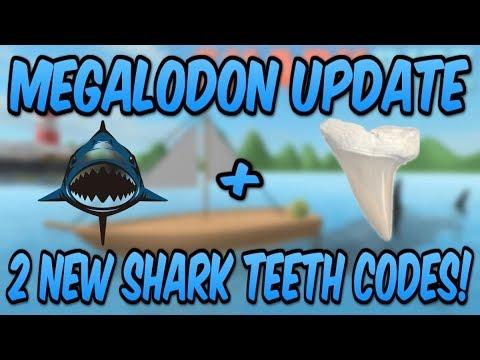 Roblox Megalodon Sharkbite Update New Codes Megalodon Update 2 New Shark Teeth Codes Roblox Sharkbite Youtube