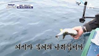 마닷도 박 프로도... 왔다하면 #여기가_복어의_나라입니까 thumbnail