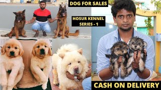 Dog For Sales/Puppy's Price List/Kennels In Tamilnadu/Delivery Available/SE VLOGS