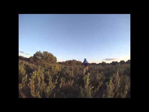 Salida por los pinares de Villarrobledo
