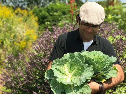 DIY: Making a living cabbage bouquet with Paul Zammit