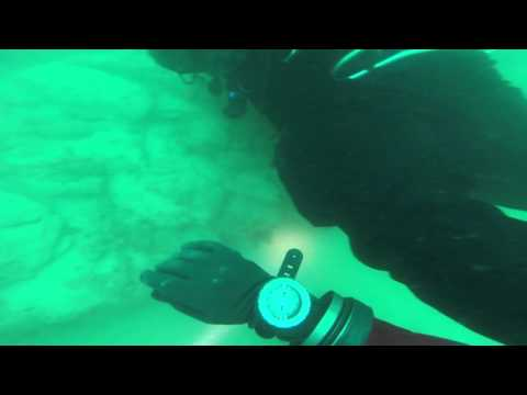 Plymouth Breakwater Fort Dive - S.Devon - 12th April 2015