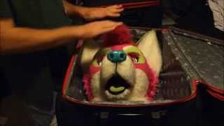 Tips of Fuzz Ep. 1: Packin
