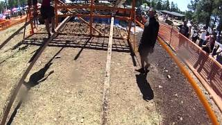 Terrain Mud Run in Flagstaff - 2014
