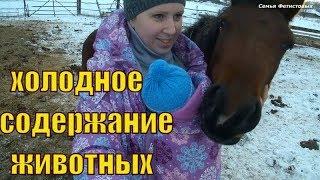 Холодное содержание животных. Бельё ФЭСТ // Семья Фетистовых