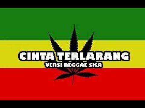 CINTA TERLARANG !! Versi Reggae Ska Cover By:Reka Putri    Vidio Lirik