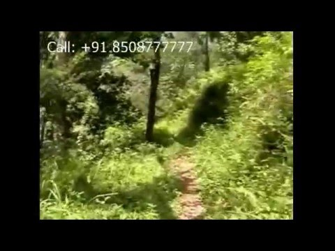Kutralam waterfalls Tourism site for Real estate buyers for High Guideline value land Courtrallam