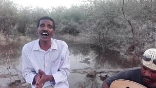 عبد المنعم أب سم - إحساس