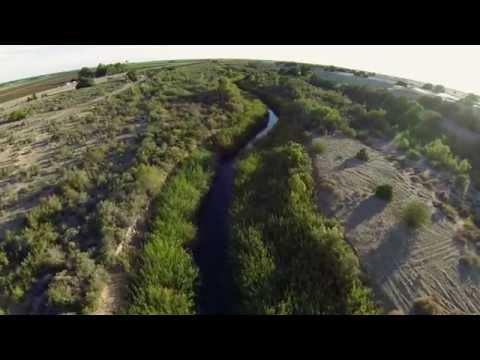Bringing a Pulse of Life to the Colorado River Delta
