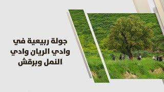 جولة ربيعية في وادي الريان وادي النمل وبرقش