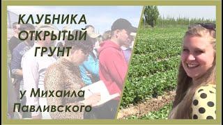Выращивание клубники в открытом грунте. Отчет с семинара \Ягодные культуры 2015\ в ЛПХ Павливские.