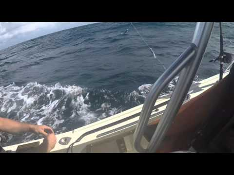 South Florida Offshore Fah-Q Fishing