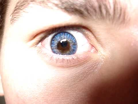 Freshlook Colorblends True Sapphire (Panos) - YouTube True Sapphire Contact Lenses