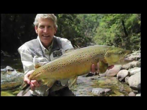 Vankaville TRAVEL - Fly Fishing Tutorial - NZ