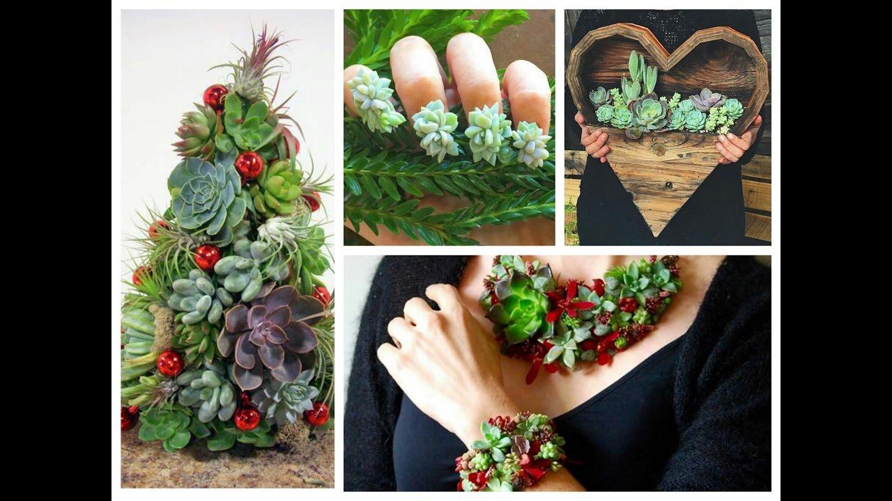 Diy Succulents Crafts Ideas Amazing Succulent Planting