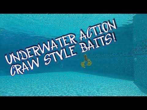 UNDERWATER ACTION: CRAW-FISH STYLE BAITS!!!