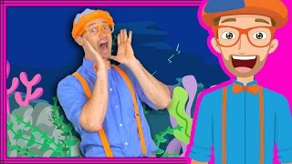 Ocean Animal Song by Blippi | Nursery Rhyme Songs for Children