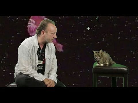 David Yow of The Jesus Lizard interviews Lil Bub, a cat from outer space