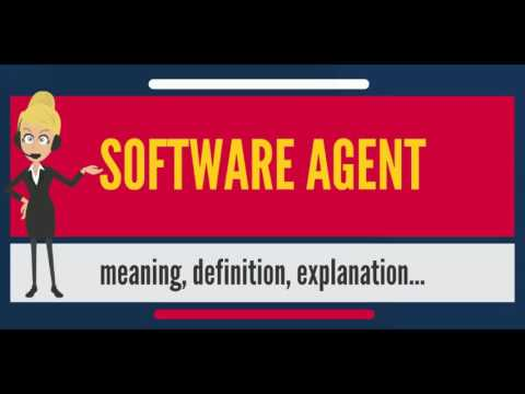 What is SOFTWARE AGENT? What does SOFTWARE AGENT mean? SOFTWARE AGENT meaning & explanation