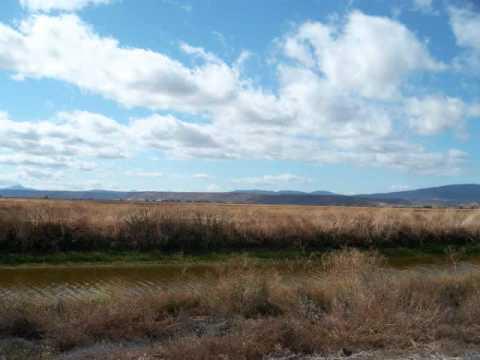 Tulelake and Lower Klamath Refuges Waterfowl Hunting 2011.wmv
