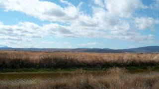 Tulelake and Lower Klamath Refuges Waterfowl Hunting 2011.wmv