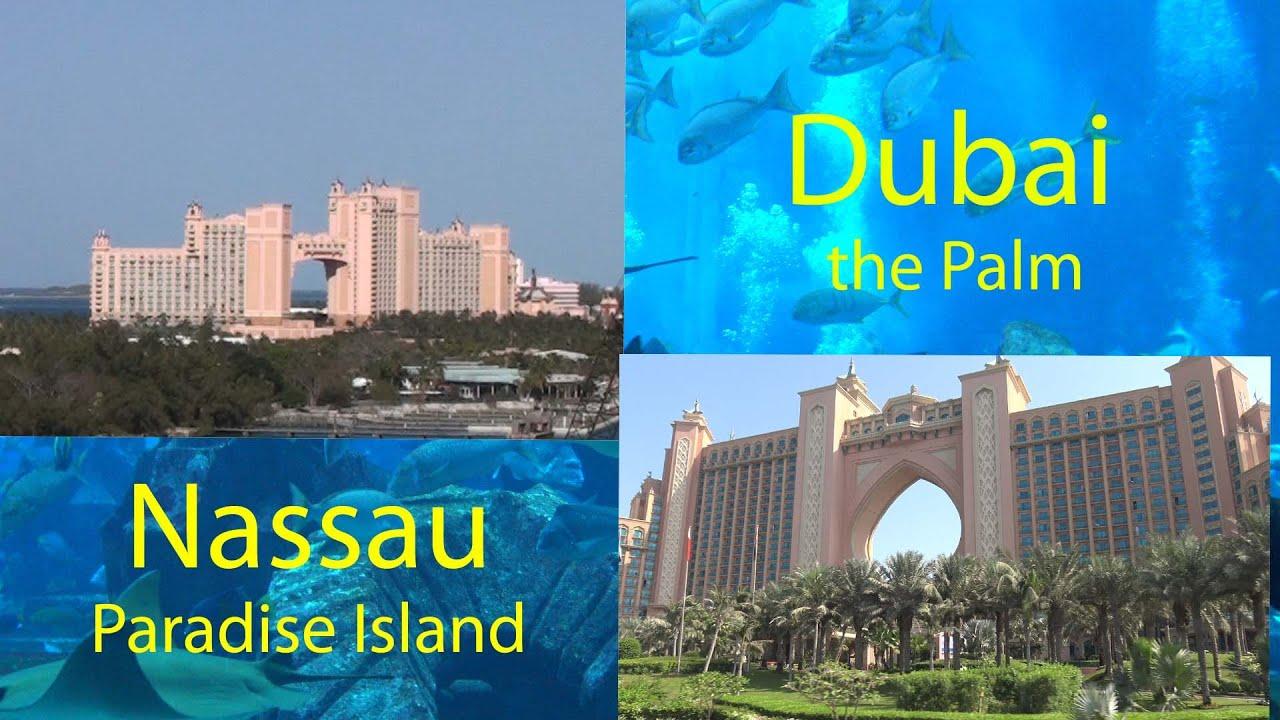 100 Hotels Near The Atlantis Bahamas Bahamas Resort