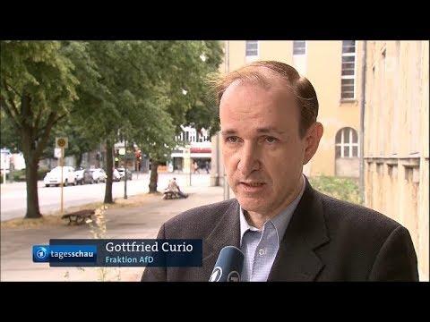 Maas will Kontingente für afrikanische Migranten - Statement von Dr. Curio in der Tagesschau