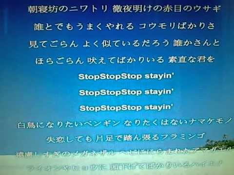 菅野美穂/zoo ~愛を下さい~歌...