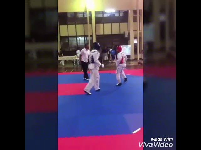 Arthy lie taekwondo action