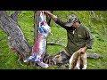 Hunting Fallow deer in New Zealand # 190(Hunting and skin deer)
